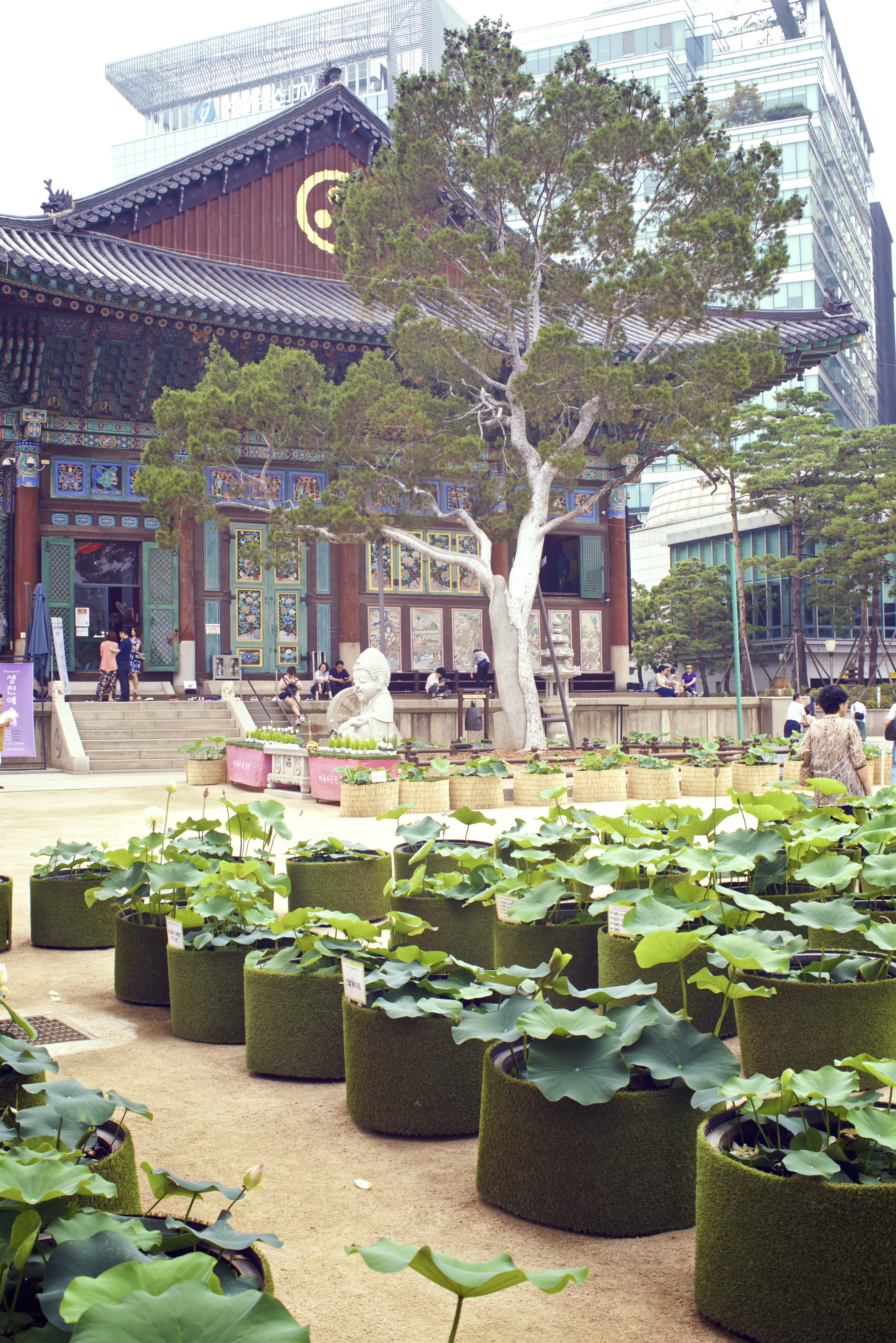 Global seoul mate mission board visit seoul the official travel lotus flower festival jogye temple izmirmasajfo