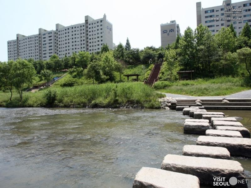 Yangjaecheon Stream & Tancheon Stream_1