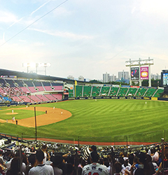 Autumn is the season of baseball.