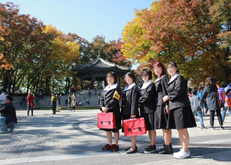 Wear Nostalgic School Uniform and Make Memories with Namsan Cherry Blossoms : Special Event_2