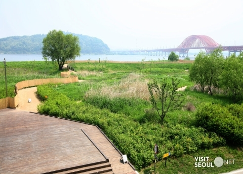 Gangseo Marsh Ecological Park